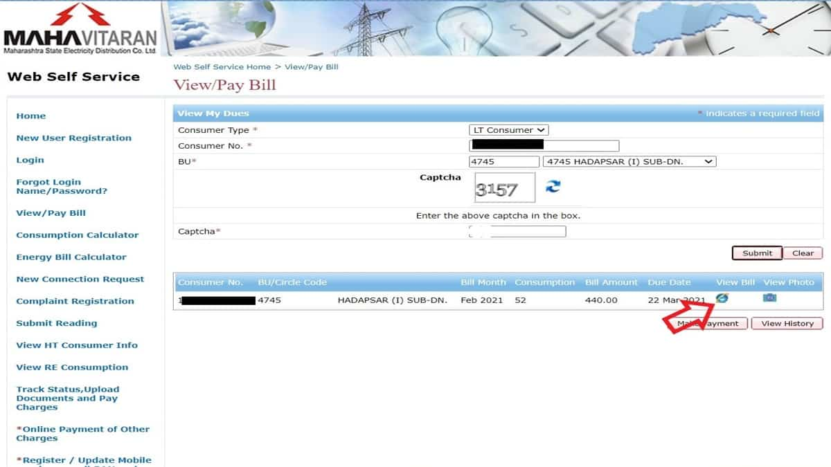 view MSEDCL bill online
