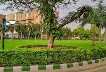 NIRF Medical College Ranking 2021